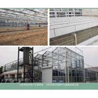 太阳能干燥系统温室