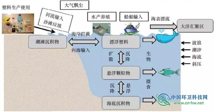 微塑料从源到汇的输运机制示意图