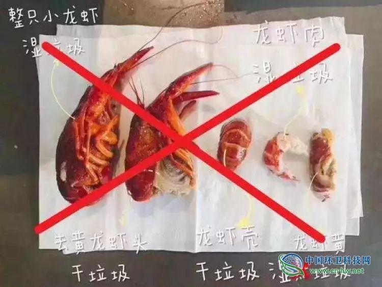 小龙虾是湿垃圾还是干垃圾?奶茶喝完咋扔?正解来了