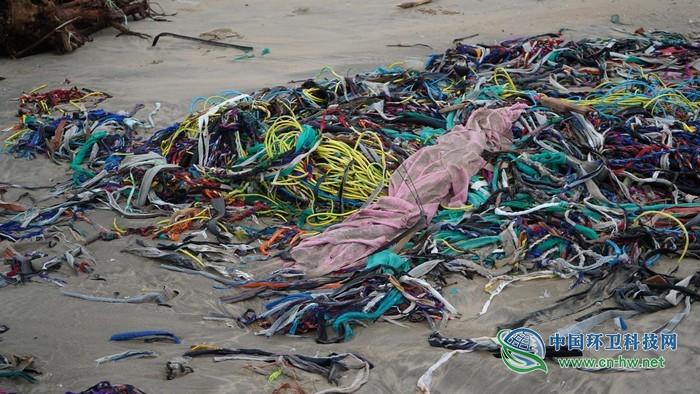 """1公里垃圾带与海洋仅隔20米,广东村民说这样可以""""防台风"""""""
