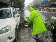 风雨无阻,佳立美创环卫工人奋战台风后城市清污一线!