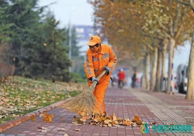 """是谁,给了城市""""落叶不扫""""的底气?"""