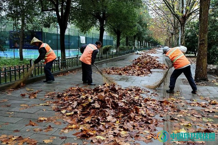 """冬雨""""扫""""落叶!随州环卫工加班加点迎战清洁一线"""