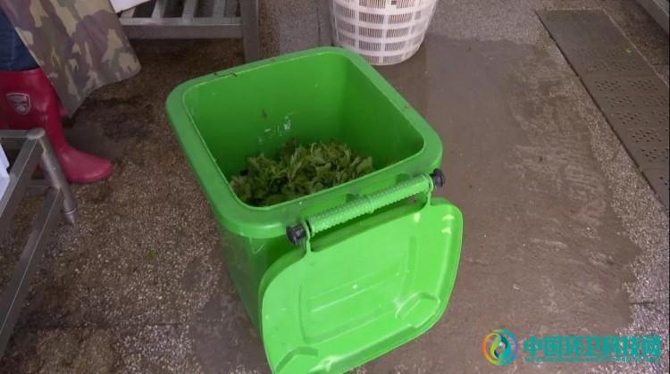 江西广昌:变废为宝,打造厨余垃圾新归宿!