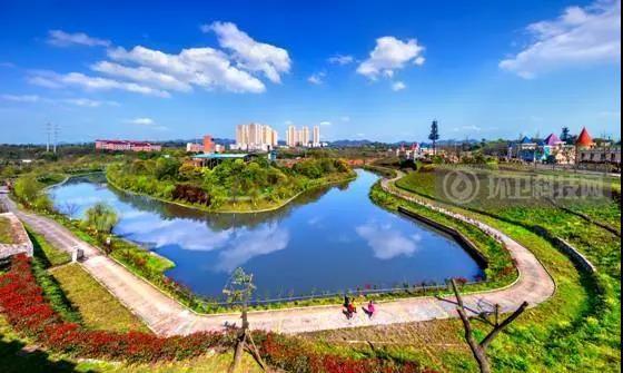 乡村气象新——重庆九龙坡区交出人居环境整治高质量答卷